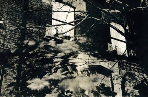 Chasing Shadows - house