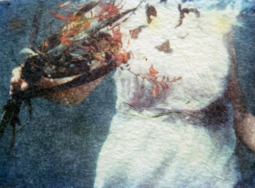 Ophelia #2 - polaroid emulsion lift